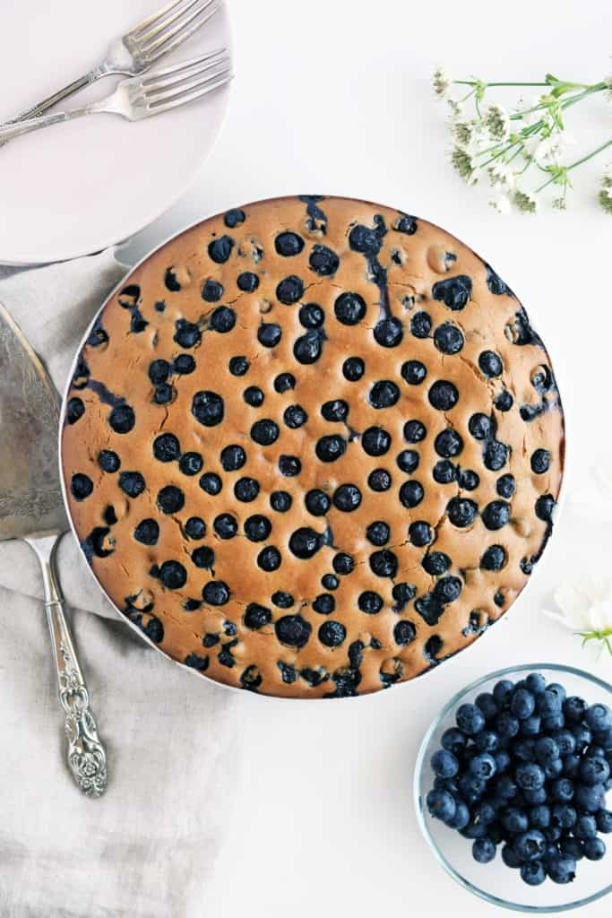 Gluten free blueberry cake on plate with fresh blueberries and cake cutter