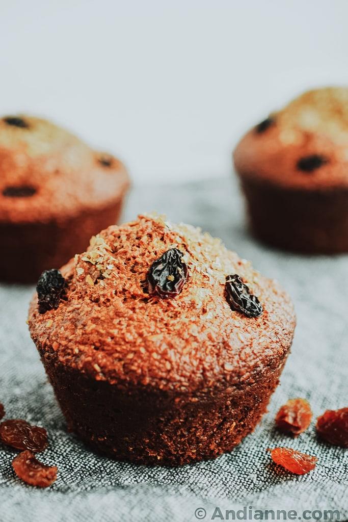 classic raisin bran muffins close up detail