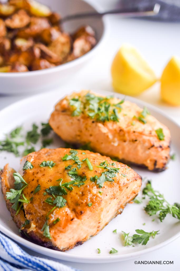 air fryer salmon on a white plate