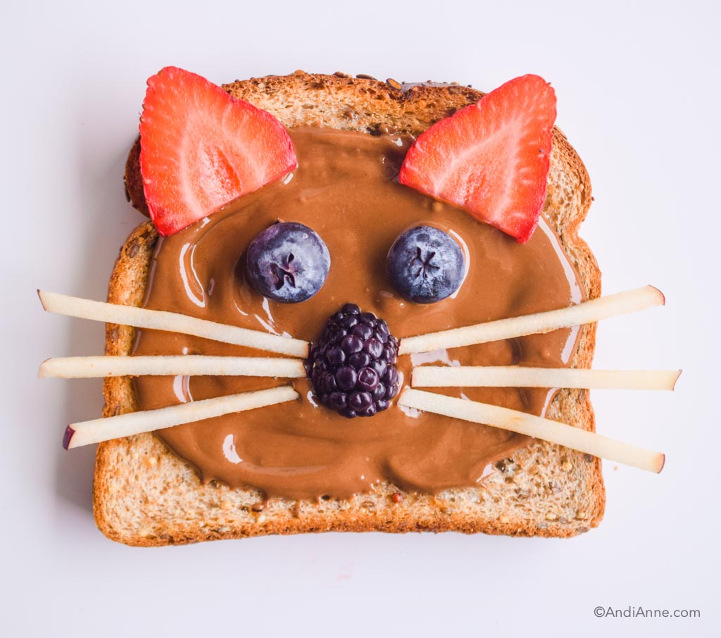 cat toast with chocolate nut butter spread, blueberries, strawberries, blackberries and skinny apple slices for whiskers