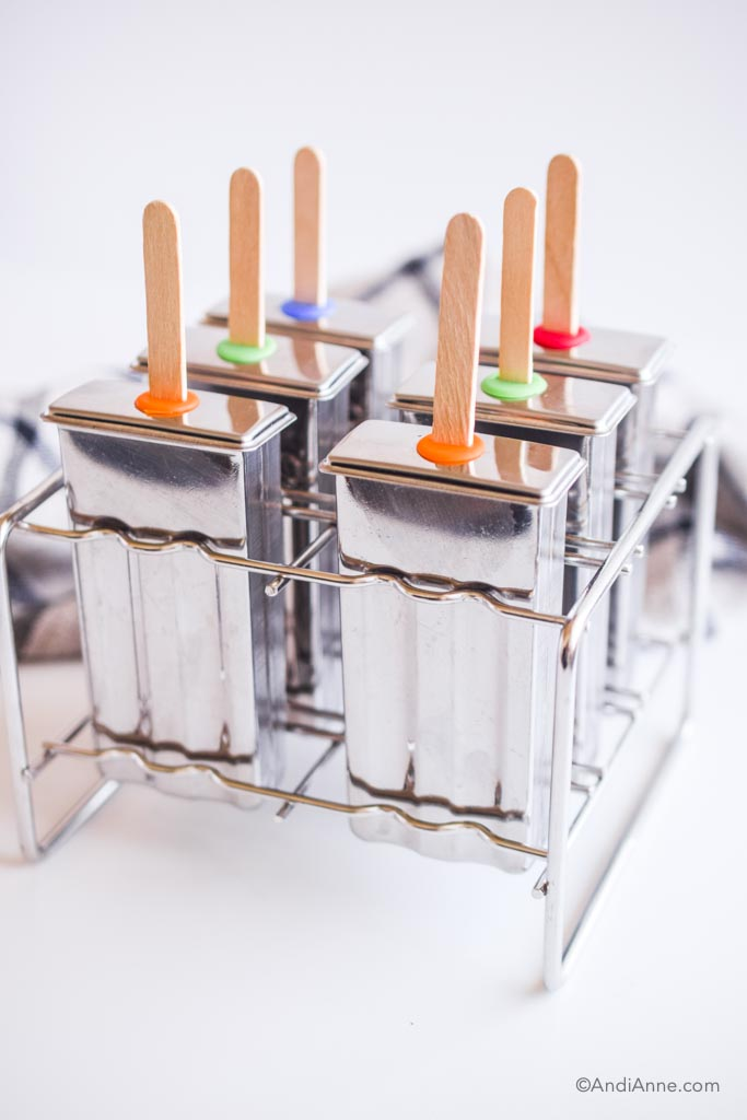 stainless steel popsicle mold with wood popsicle sticks poking out of it