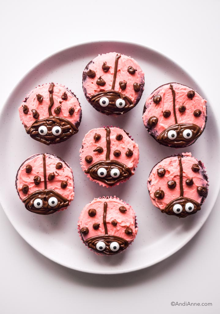 ladybug cupcakes on a white plate
