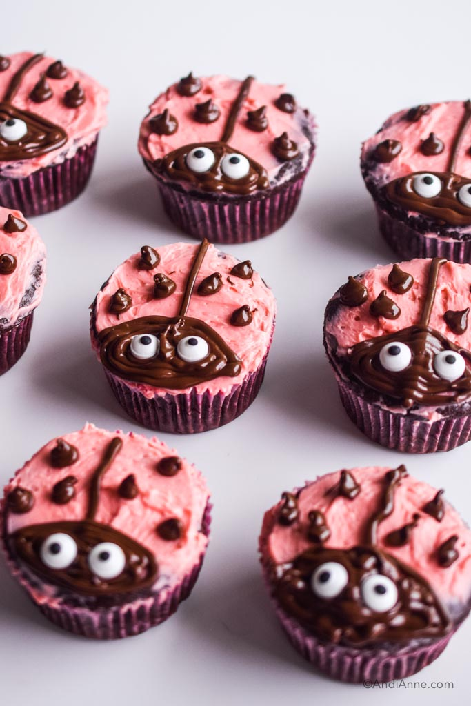 ladybug cupcakes with chocolate designs and pink icing