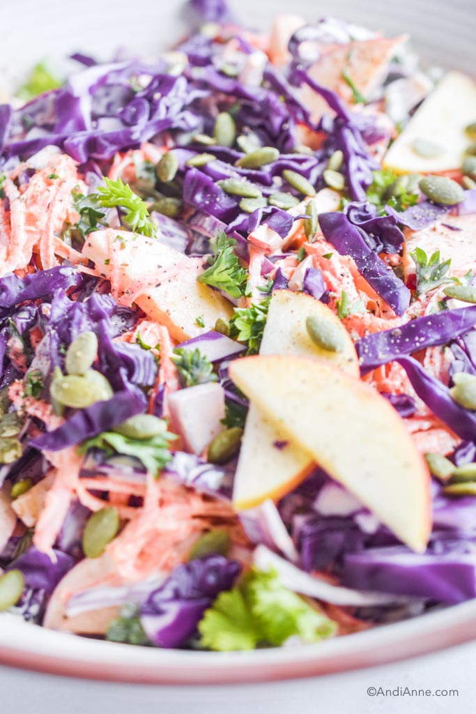 close up of Carrot apple cabbage coleslaw