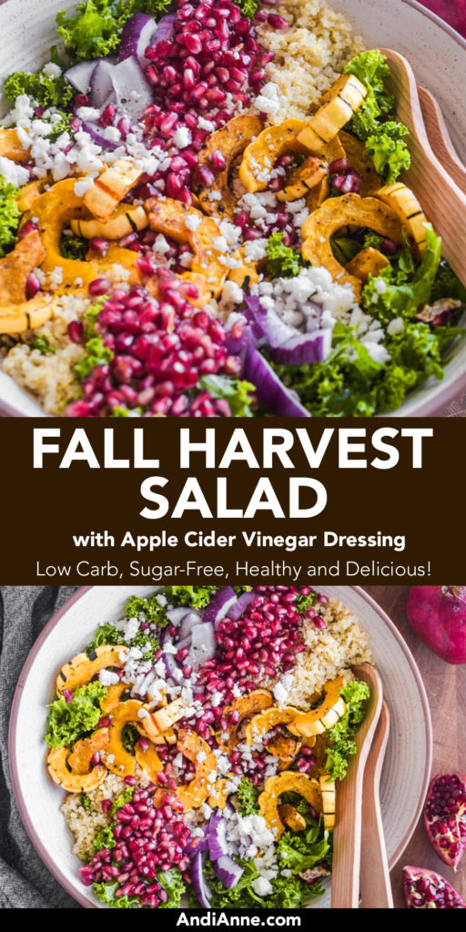 Fall harvest salad is made with delicata squash, pomegranate and kale. It's a beautiful feast for the eyes. This salad is loaded with incredible flavors and perfect to serve for any Fall celebration. This salad is topped with a simple homemade apple cider vinegar dressing.