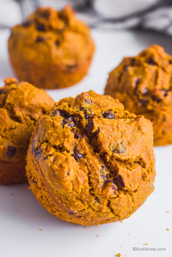 pumpkin chocolate chip muffins on a white table