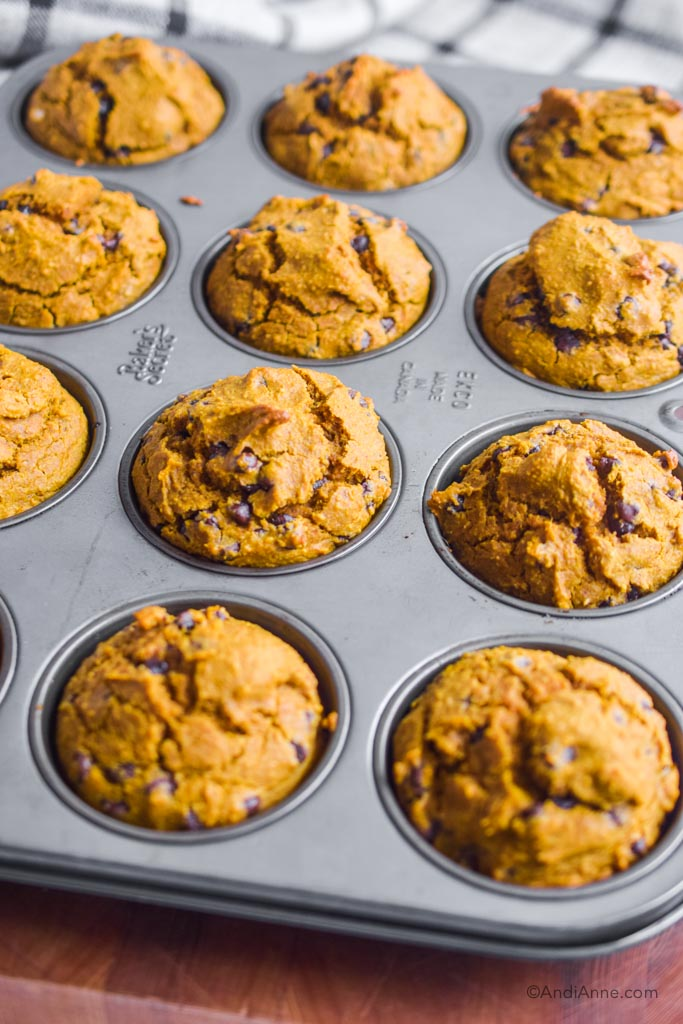 pumpkin chocolate chip muffins in the muffin pan