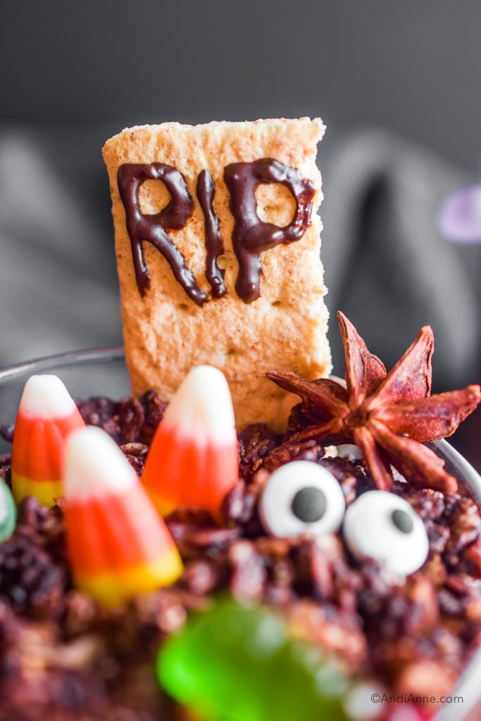 """Close up of the graham cracker with chocolate """"RIP"""" written on the front."""